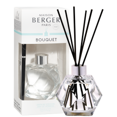 Transparent Geometry Scented Bouquet Gift Pack